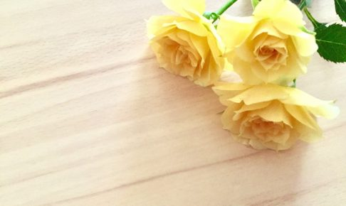子宮筋腫核摘出術後はホルモンバランスが大幅に乱れる